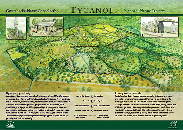 Ty Canol. Reconstruction of 19th century landscape. Client: Countryside Council for Wales